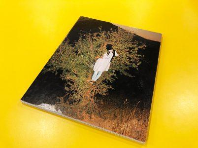 Tabriz to Shiraz Book Cover